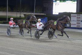 Andre H. Stensen og Crackajack hadde full kontroll i Derbykval i august – onsdag kommer trønderhesten på hovedstadsbesøk igjen og blir hardt betrodd i V76-finalen (foto: hesteguiden.com)