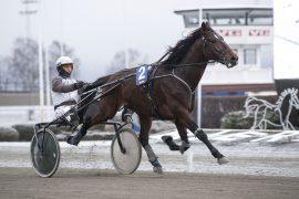 Er helfranske Ecu De Mieloui og Eirik Høitomt fortsatt ubeseiret etter karrierens femte start i V75 Bonus andre avdeling på Bjerke onsdag? (foto: hesteguiden.com)