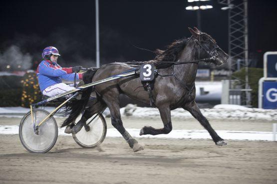 Den høykapable svenskegjesten Vollanfaks vant enkelt på Bjerke i romjulen – fortsetter hesten til Per Ludvig Nilsen den trenden i V75 Bonus-finalen onsdag? (foto: hesteguiden.com)