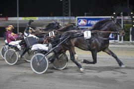 Ask Major innfridde som vår herlige banker i debuten for Martine Wessel 27. mars – kan Tommy Fløysand strekke armen i været også etter V75-5 på Bjerke tirsdag? (foto: hesteguiden.com)