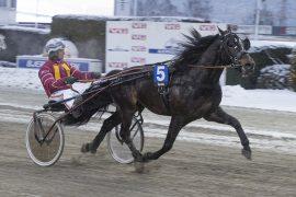 Gjølstadvinner Reime Kongen tester Derbydistansen mot eldre hester i V75-6 sammen med trener Jan Roar Mjølnerød på Bjerke onsdag kveld (foto: hesteguiden.com)