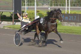 Tommy Fløysand kunne juble da Ask Major tross spor tolv vant overlegent på 25.5 sist – onsdag har 5-åringen et gaveløp i V75-2 der kun et uhell kan frata Bork Odin-sønnen seieren (foto: hesteguiden.com)