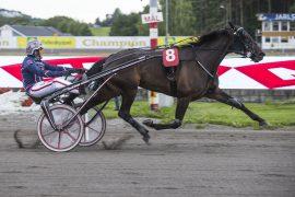 Med full spenst på 09.9 tok Hillary B.R. sin 12. strake sammen med Magnus Teien Gundersen – lørdag får vi trolig se henne ta seg av Jarlsberg GP hoppefinale (foto: hesteguiden.com)